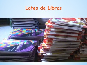 Lotes 3